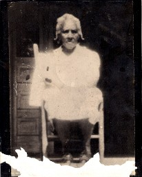 Lula Peterson